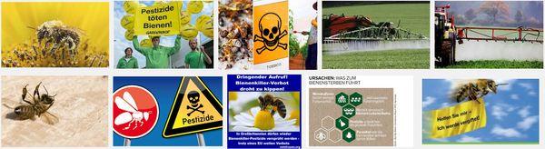 Pestizide-toeten-bienen