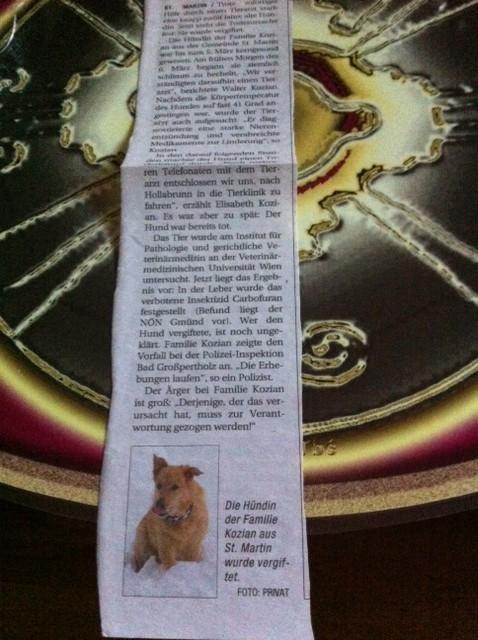 hund-der-familie-kozian-vergiftet