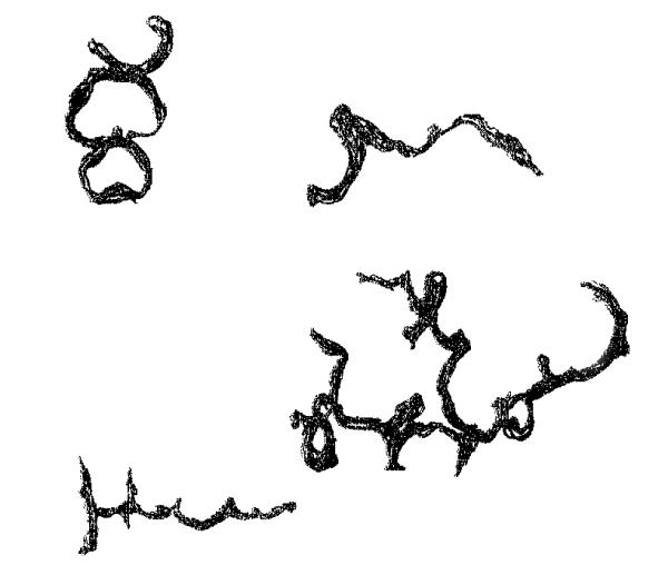 apfelschrift