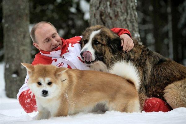 Putin-mit-hunden