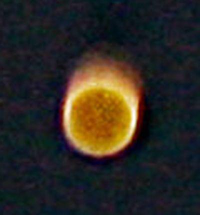 orb-farbe-gelb-struktur-gepunktet-in-bewegung