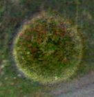 orb-farbe-gruen-struktur-gepunktet-as-kl