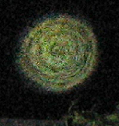 orb-Farbe-gruen-struktur-spirale-as