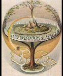 flacheerde-lebensbaum-k