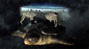 flatearth-turtle1