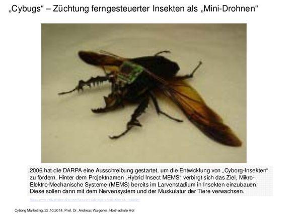 drohne-als-insekt-getarnte-zuechtung