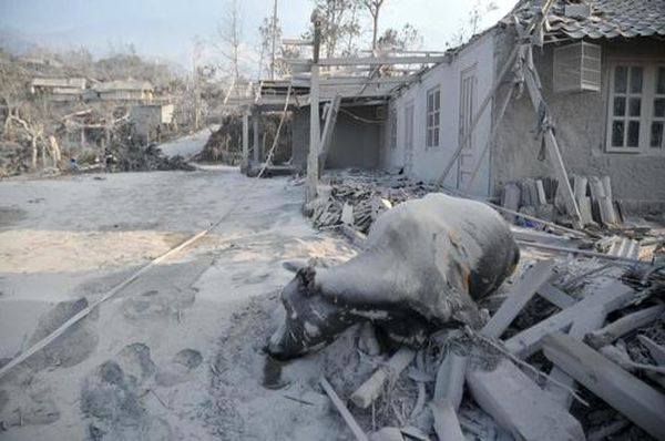 w3000 - 2010-10 - Erbeben und Vulkanausbruch kosten mehr-als-300-Menschen-das-Leben-Vulkans Merapi auf der Insel Java-Indonesien