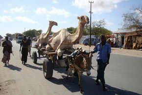 w3000 - 2011-6 - Duerre in Somalia