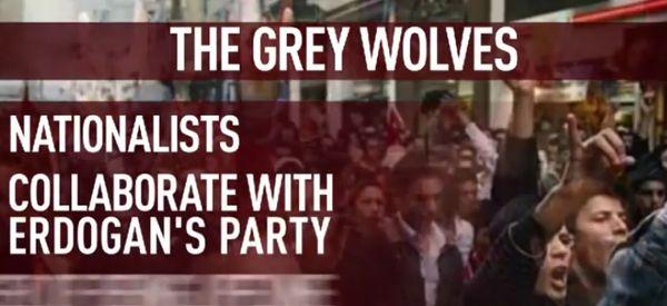 die grauen woelfe - erdogans freunde