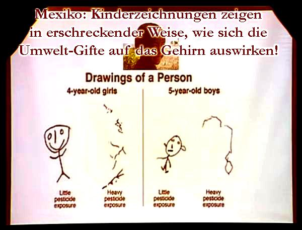 Klinghardt-Kinderzeichnungen-Studie-Mexiko-k