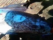 fisch-mit-tattoo