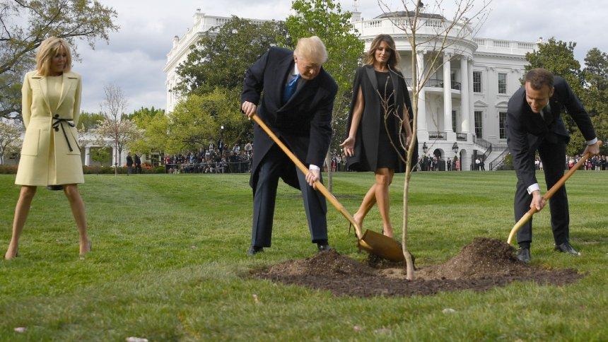 Macron (re.) und Trump beim Pflanzen